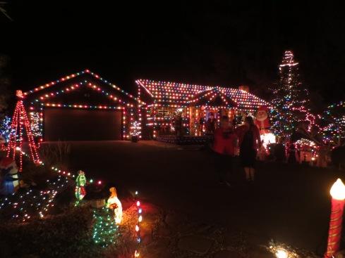 Driveway Christmas Lights