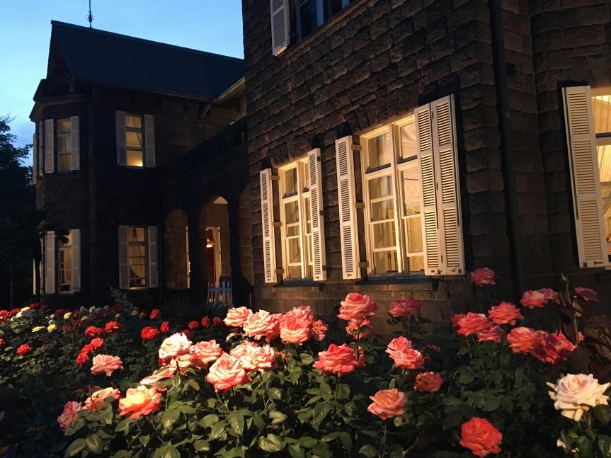 Roses and a Light-Up at the Kyu-Furukawa Gardens(旧古河庭園)