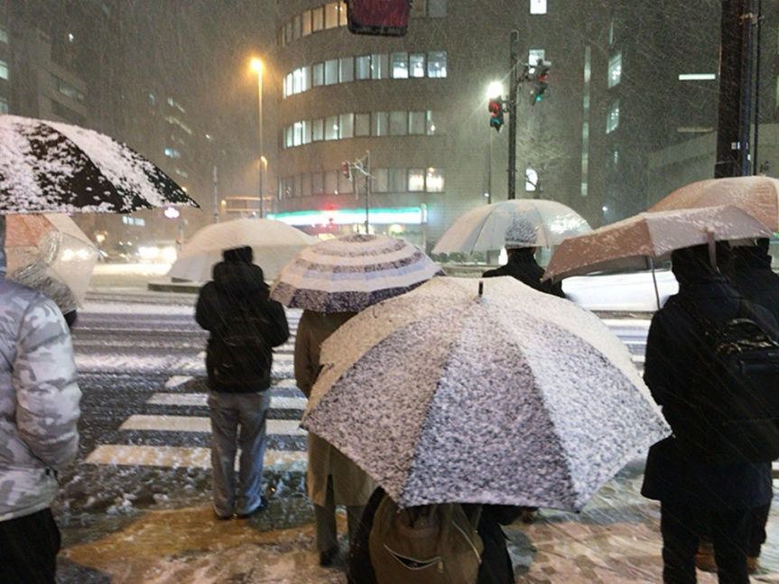 It snowed last night in Tokyo!