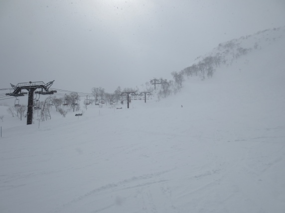 It got so snowy, it was hard to see for skiing.